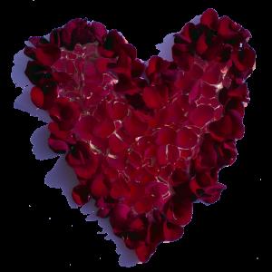 heart logo true mint blueprints